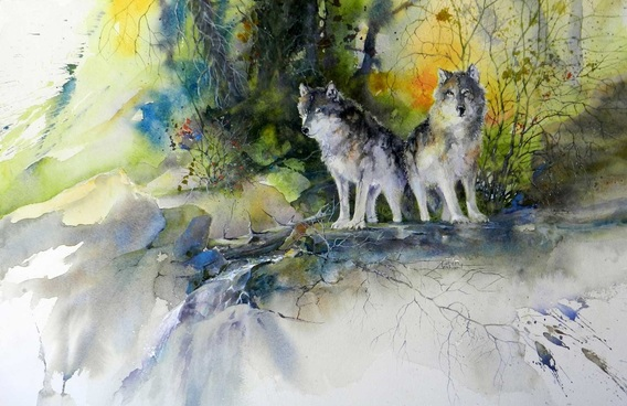 Karen Lenhart artist, Morning Vigil watercolor painting of two wolves in summer landscape, Giclée Print Available
