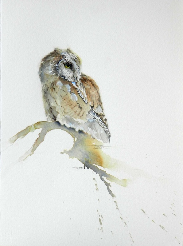 Karen Lenhart artist, Owl be Back watercolor painting of an owl portrait on a white field, Giclée Print Available